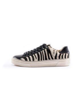 Zebra-Cordovan2901rw